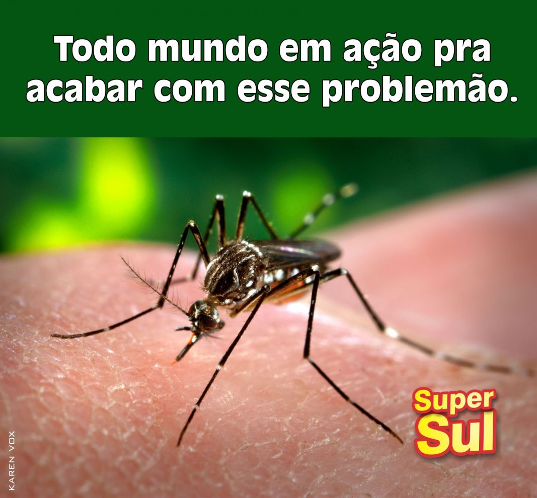 http://www.redesupersul.com.br/arquivos/central/366cafee158b6eef9b6c2d48fcdcd8ea.jpg